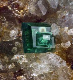 Zeunerite. Montoso quarry, Bagnolo Piemonte, CN - Italy FOV=2.6 mm Collection et photo Giuseppe Finello