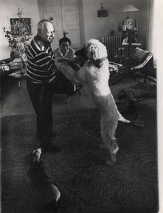 Picasso dances with Kabul, the Afghan Hound, and wee one, Lunt, the Dachshund waits. c 1960