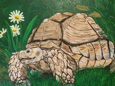 Love tortoises? Well then consider adding this lovely tortoise painting to your art collection! This painting was modeled by my very own