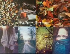 Collages Number 14: Falling Autumn