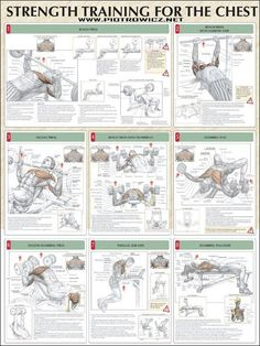 Incinerate Fat and Build Muscle With This Kickass Printable Workout - Strength Training for the Chest: bench press, bench press with narrow grip, incline press, bench pr - Fitness Workouts, Fitness Tips, Fitness Motivation, Health Fitness, Lifting Motivation, Fitness Quotes, Strength Workout, Strength Training, Muscle Fatigue