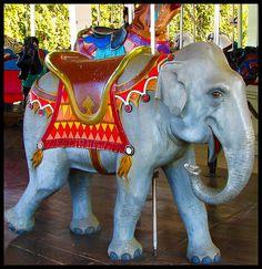 PTC Carousel Elephant, Louisville Zoo