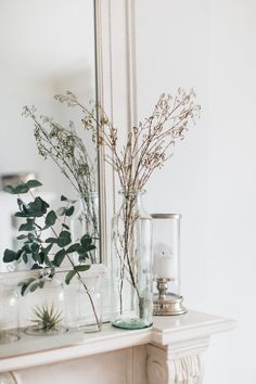 Glass vase with dried foliage