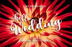 Hello Wedding - Free Font of The Week from FontBundles.net