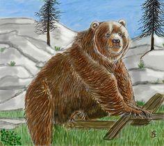 Kodiakbär, der größte Bär der Welt