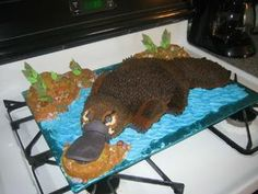 This platypus birthday cake almost looks real! 3rd Birthday, Birthday Cakes, Best Cake Ever, Food Humor, Funny Food, 16 Cake, Platypus, Dream Cake, Cake Images