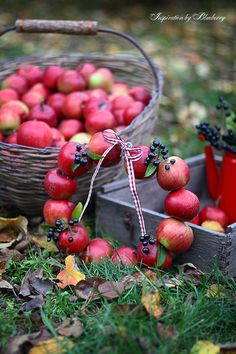 ** Autumn ..red apples