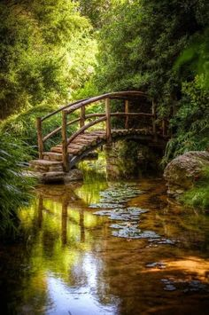 The most beautiful landscapes in the United States pictures): Isamu Taniguchi Japanese Garden's Togetsu kyo bridge at Zilker Botanical Gardens in Austin Texas Beautiful World, Beautiful Places, Peaceful Places, Beautiful Scenery, Simply Beautiful, Beautiful Gardens, Pathways, Belle Photo, Garden Bridge