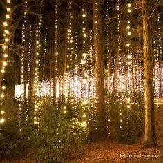 Fairy light strands dropped from trees - creates a magical woodland wedding setting! Via...The Handmade Home