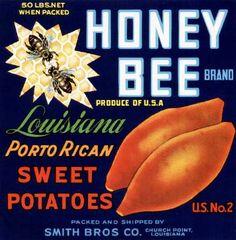 Honey Bee Sweet Potatoes. #crateart