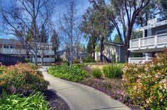 Exterior shot of the Biltmore in Cupertino, CA