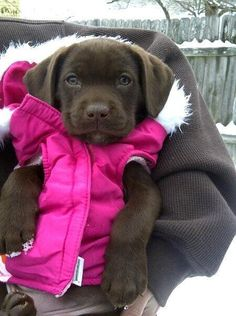 Ready for the cold weather