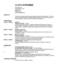 CV Preview