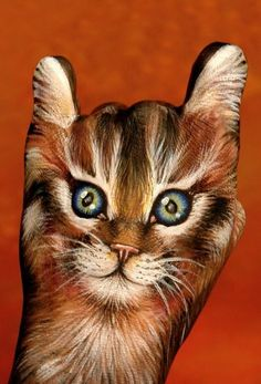 Hand Painted cat