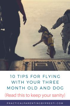 10 tips for flying with your 3 month old and dog from a first time mom.