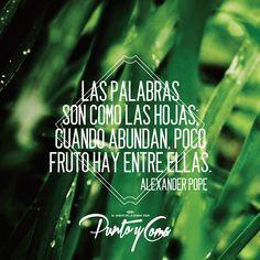 Las palabras son como las hojas; cuando abundan, poco fruto hay entre ellas. — Alexander Pope
