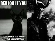 ~~For my black cat, Loki & the wonderful, magical being he was named for!!! #Loki~~