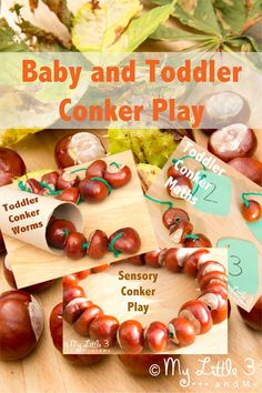 Baby and Toddler Conker (Buckeye) Play Ideas from My Little 3 and Me.