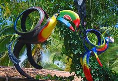 What you can do with a set of old tyres, colours and imagination ;0) Costa Rica.