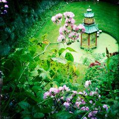 Mount Congreve gardens, Waterford, Ireland.  Lovely.