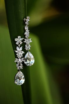 Diamond Drop Earrings With Floral Details | Adam Opris Photography https://www.theknot.com/marketplace/adam-opris-photography-davie-fl-544522