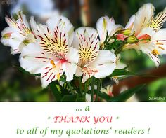 ... a * #THANK_YOU * to all of my quotations' readers ! ( #Samara )