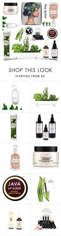 """Earth Day Essentials: All-Natural Beauty"" by samra-bv ❤ liked on Polyvore featuring beauty, Bellila, Mullein & Sparrow, The Body Shop, Java, One Love Organics, earthday and polyvorecontest"