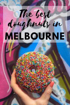 7abc653632e The best doughnuts in Melbourne Australia Great Barrier Reef