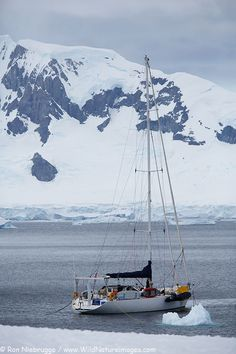 Sailboat in Antarctica