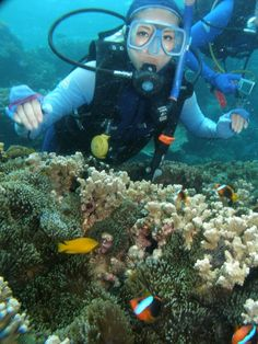 Scuba Diving in the Great Barrier Reef, Australia last year