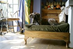 Raised dog bed how to