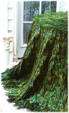 Peacock Feather Tablecloth with EXTRA FLOOR INCHES