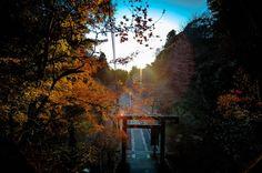 La photo du jour : un temple au lever du jour ©jimy40