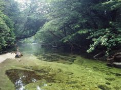 Yakushima Island in Japan
