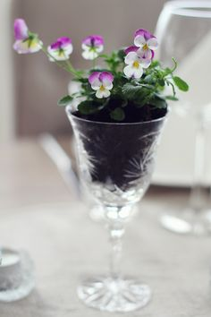 sweet flowers in wine glass Black Flowers, Pretty Flowers, Flower Basket, Pansies, Crochet Flowers, Cute Gifts, Container Gardening, Table Decorations, Centerpieces