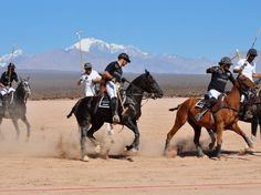 Two dozen horses took turns carrying the eight polo players (four per team), including winemakers Audebert and Gustavo Ursomarso, and professional polo players the Bernal brothers—Cristian and Gonzalo.