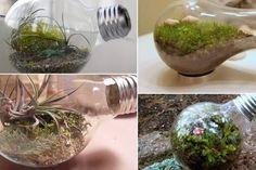 Reaproveite suas lâmpadas velhas e faça artesanatos legais de se utilizar em casa. É só ver o passo