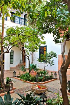 Luxury Garden Center and Landscaping Moroccan Garden, Indian Garden, Persian Garden, Spanish Garden, Haus Am See, French Style Homes, Paradise Garden, Terrace Garden, Home And Deco