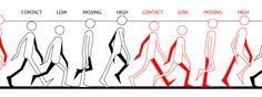http://2.bp.blogspot.com/-mw2E6MSOwCQ/Tur95w6TEnI/AAAAAAAAAOo/BVZy5jmhTn0/s1600/walk-cycle.jpg