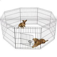 special offers aleko 24 inch dog playpen pet kennel pen exercise cage fence 8 panel
