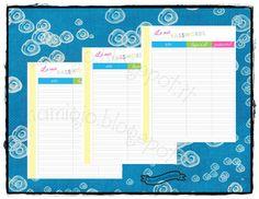 Inserto Password, tema: arcobaleno  #refill #planner #filofax
