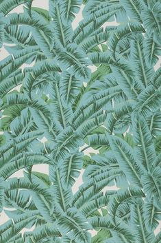 White, shades of green and pastel turquoise give the palm leave theme of designer wallpaper Flavia a truly strong presence. It introduces the green. Tropical Wallpaper, Green Wallpaper, Damask Wallpaper, Wallpaper Decor, Designer Wallpaper, Pattern Wallpaper, Wallpaper From The 70s, Wallpaper Layers, Mint Green Aesthetic