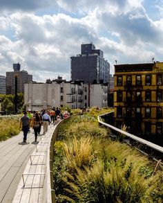 Stroll the High Line