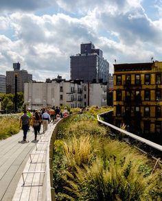 Stroll the High Line