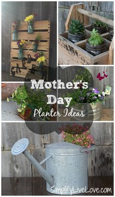 Looking for the perfect gift idea? Check out this collection of 5 easy planter ideas for Mother's Day! Perfect for any mom.