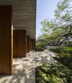 Casa dos Ipês / Studio MK27 - Marcio Kogan + Lair Reis