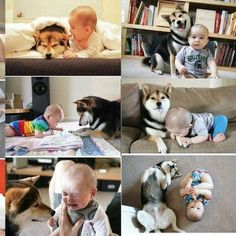 Cuteee baby and dog