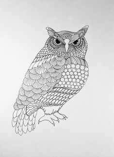 Zentangle drawing of an owl. Drawing is done with pen and ink on white paper. Owl is done full body. This drawing will look good in the living