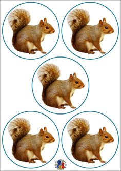 Animals In The Bible, Christmas Templates, Numeracy, Science And Nature, Crafts, Forest Animals, School, Fall Season, Games