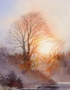 Tutorial sun through tree branches.